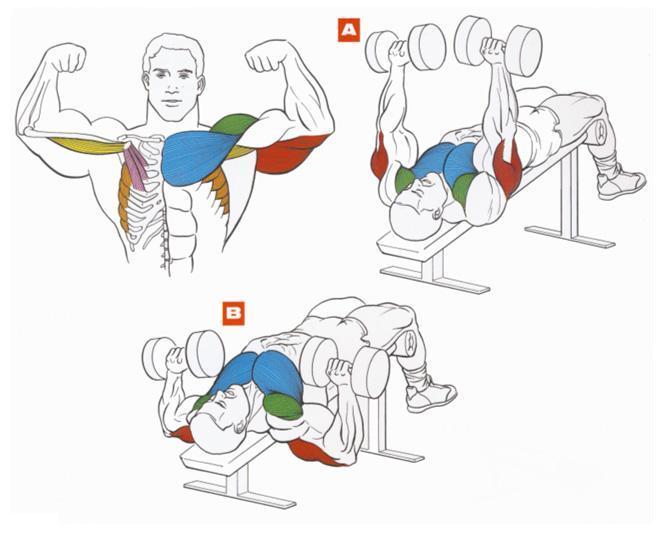 Как накачать грудные мышцы бодибилдинг.